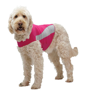 Thundershirt Dog How To Put On